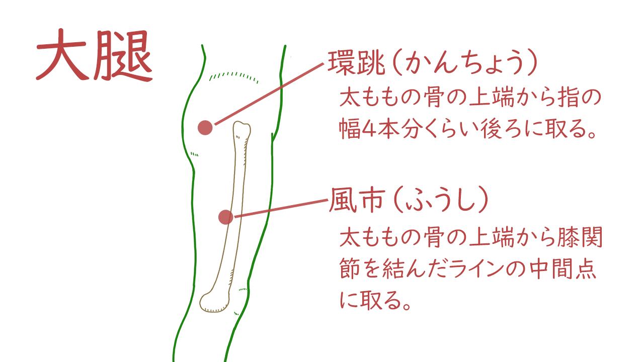 大腿(太もも)のツボ