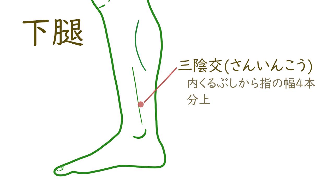 下腿のツボ2